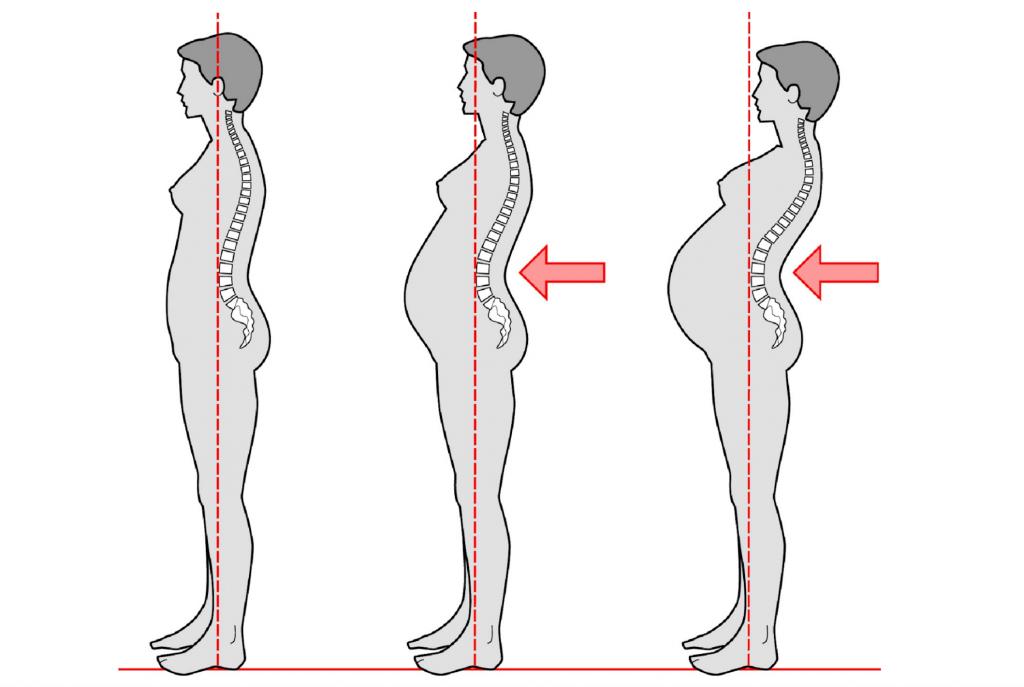 физиологические изменения во время беременности