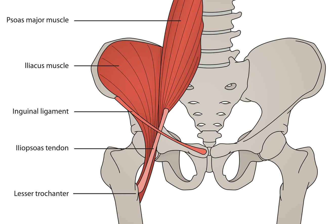 Тендинопатия подвздошно-поясничной мышцы