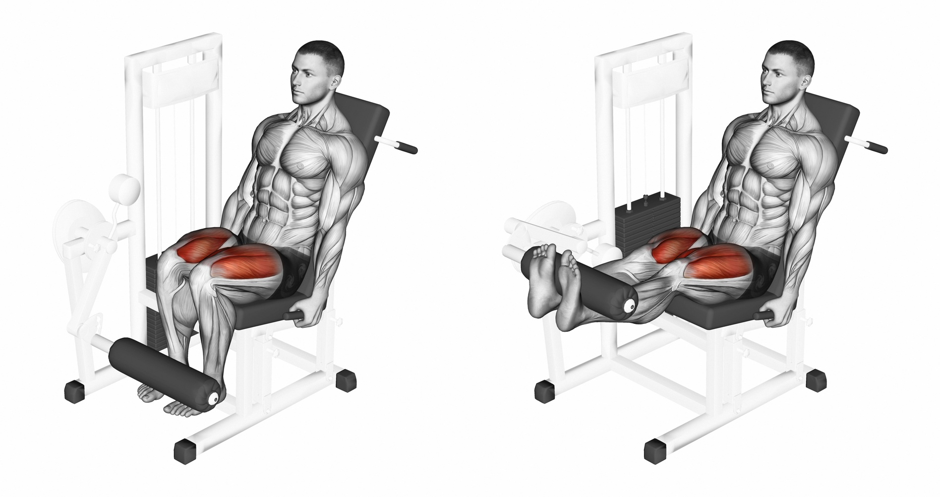 Безопасно ли разгибать колени в тренажере?