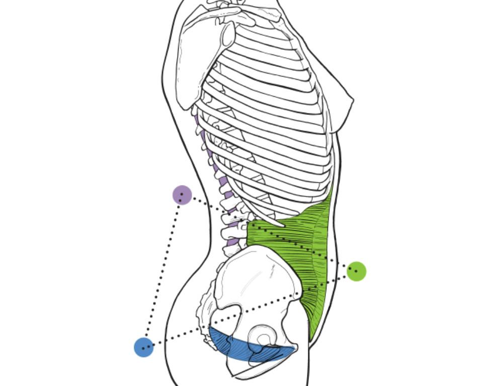 боль в пояснице и несостоятельность мышц тазового дна
